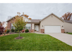 Photo of 737 Autumnwood Forest Drive, Lake St Louis, MO 63367-2651 (MLS # 17087914)