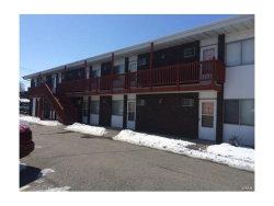 Photo of 1306 9th Street , Unit 205, Highland, IL 62249-6224 (MLS # 17088081)
