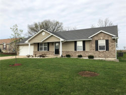 Photo of 192 Palace Way Drive, Troy, MO 63379-7267 (MLS # 17088203)