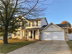 Photo of 43 Stonebrooke, Troy, IL 62294-2458 (MLS # 17088649)