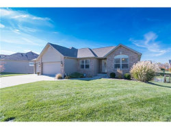 Photo of 1869 Robins Mill Court, Maryville, IL 62062-5816 (MLS # 17088775)