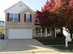 Photo of 11477 Pineview Crossing, Maryland Heights, MO 63043-5103 (MLS # 17088920)