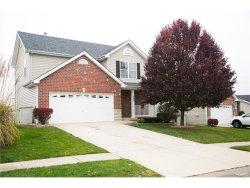 Photo of 345 Stone Village Drive, Wentzville, MO 63385-3287 (MLS # 17089884)