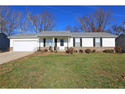 Photo of 11 Robin Hood Drive, Troy, MO 63379-2394 (MLS # 17090909)