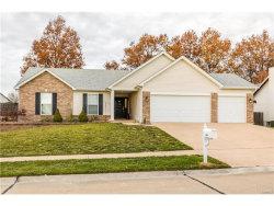Photo of 1429 Sunview Drive, O'Fallon, MO 63366-3446 (MLS # 17091065)
