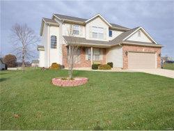 Photo of 682 Vinci Drive, Caseyville, IL 62232-6223 (MLS # 17091225)