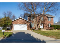 Photo of 31 Timber Meadows Place, Edwardsville, IL 62025-5516 (MLS # 17091267)