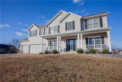 Photo of 1452 Devonshire County Drive, Wentzville, MO 63385-4357 (MLS # 17095078)
