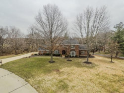 Photo of 9814 Sunset Greens Drive, Sunset Hills, MO 63127-1525 (MLS # 17095180)