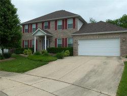 Photo of 6 Delta Drive, Collinsville, IL 62234 (MLS # 17095548)