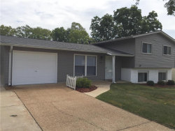 Photo of 518 Spring Meadows Drive, Manchester, MO 63011-3922 (MLS # 18000387)