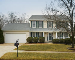 Photo of 509 Audubon Village Spur, Wildwood, MO 63040-1723 (MLS # 18001751)