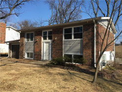 Photo of 1232 Roth Hill Drive, Maryland Heights, MO 63043 (MLS # 18002343)