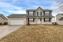 Photo of 1428 Dale, Troy, IL 62294-3614 (MLS # 18002684)