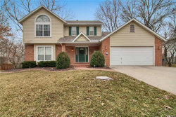 Photo of 217 Forest Ridge Court, Glen Carbon, IL 62034-1491 (MLS # 18002880)