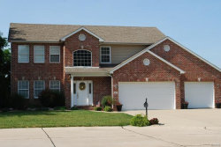 Photo of 45 Oak Leaf Drive, Maryville, IL 62062-6467 (MLS # 18005236)