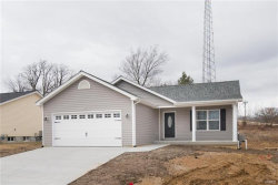 Photo of 25 Cuivre River Drive, Troy, MO 63379-5535 (MLS # 18005528)