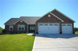 Photo of 140 Westborough Drive, Troy, MO 63379 (MLS # 18007317)