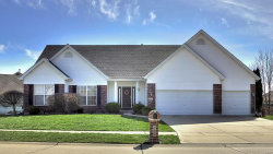 Photo of 909 Sill Ridge Drive, Dardenne Prairie, MO 63368-7293 (MLS # 18007423)