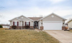 Photo of 213 Castlewood Drive, Troy, MO 63379-3342 (MLS # 18007573)