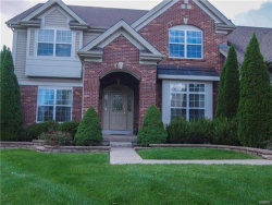 Photo of 27 Orchard Trace Lane, Grover, MO 63040-1576 (MLS # 18008741)