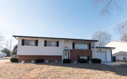 Photo of 11902 Midvale Drive, Maryland Heights, MO 63043-1761 (MLS # 18008981)
