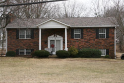 Photo of 52 Will Vina Drive, Collinsville, IL 62234-5433 (MLS # 18009638)