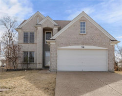 Photo of 56 Lauer Court, Wentzville, MO 63385-4643 (MLS # 18009652)