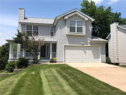 Photo of 139 East Clinton Place, Kirkwood, MO 63122 (MLS # 18009724)
