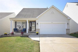 Photo of 483 Fortress Court, St Charles, MO 63303-3892 (MLS # 18010287)