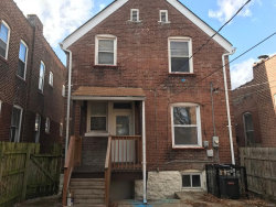 Photo of 3548 South Spring Avenue, St Louis, MO 63116-4735 (MLS # 18010573)