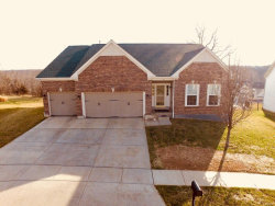 Photo of 137 Wilmer Valley Drive, Wentzville, MO 63385-4402 (MLS # 18010951)