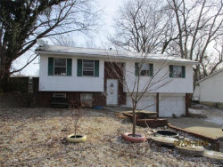 Photo of 106 Parkview Court, Troy, IL 62294-1323 (MLS # 18013729)
