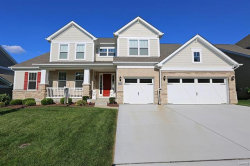 Photo of 645 Savannah View Way, Town and Country, MO 63017-0612 (MLS # 18015642)