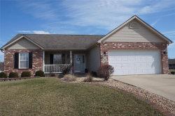 Photo of 508 Stonefield Drive, Smithton, IL 62285-1560 (MLS # 18015679)