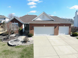 Photo of 2411 Doral Court, Edwardsville, IL 62025-3616 (MLS # 18017341)