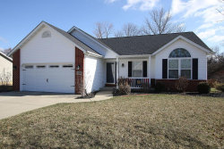 Photo of 917 Woodland Drive, Maryville, IL 62062-5691 (MLS # 18017633)