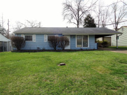 Photo of 840 Hyde Park Drive, Arnold, MO 63010-2253 (MLS # 18026356)