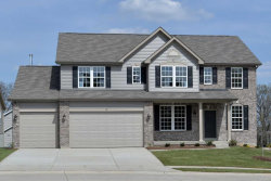 Photo of 12 Pitkin Court, Cottleville, MO 63376 (MLS # 18026611)