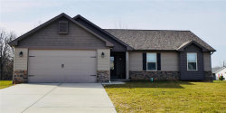 Photo of 10 Mississippi River Ct, Troy, MO 63379 (MLS # 18028099)