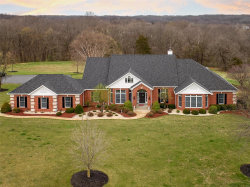 Photo of 729 Highway H, Troy, MO 63379-3141 (MLS # 18028802)