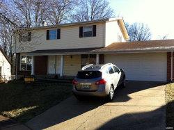 Photo of 1212 Ticonderoga Drive, Chesterfield, MO 63017-2437 (MLS # 18028837)