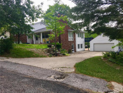 Photo of 1028 Alco Drive, Collinsville, IL 62234 (MLS # 18029041)