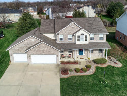 Photo of 9 White Fang Drive, Glen Carbon, IL 62034-1397 (MLS # 18029090)