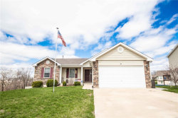 Photo of 153 Rockport Drive, Troy, MO 63379-3567 (MLS # 18029649)