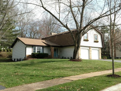 Photo of 16010 Hunters Way, Chesterfield, MO 63017-5027 (MLS # 18029768)