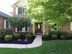 Photo of 688 St Albans Spring Road, St Albans, MO 63073-1222 (MLS # 18032047)