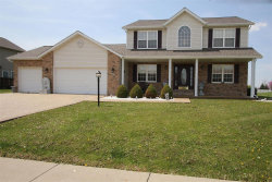 Photo of 535 Patton Drive, Troy, IL 62294 (MLS # 18033231)