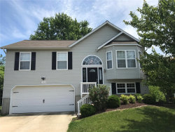 Photo of 163 Pine Hollow, Collinsville, IL 62234 (MLS # 18039376)