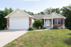 Photo of 60 Citori Court, Troy, MO 63379-3572 (MLS # 18044396)